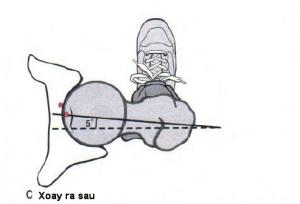 Hình 12-9 C